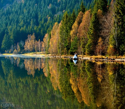 Andrei & Betty - Trash-The-Dress - 11 noiembrie 2014 - Lacul Sfânta Ana
