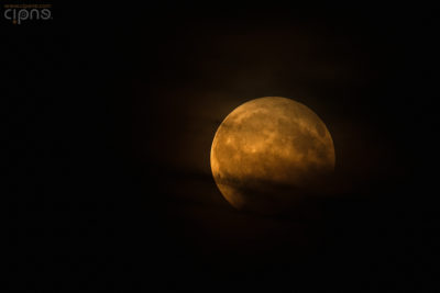 Opus Eclipse