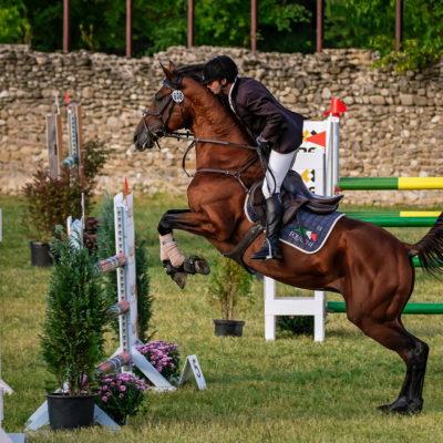 Karpatia Horse Show 2018