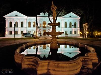 Le Palais Fondu