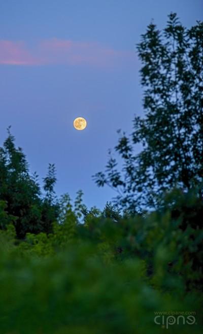 Luna Peste Vârfuri