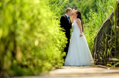 George & Adriana - Trash-The-Dress - 18 august 2015 - Parcul Natural Comana