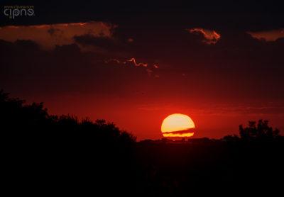 Burn the Sun