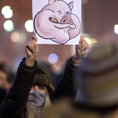 Proteste – 1 februarie 2017