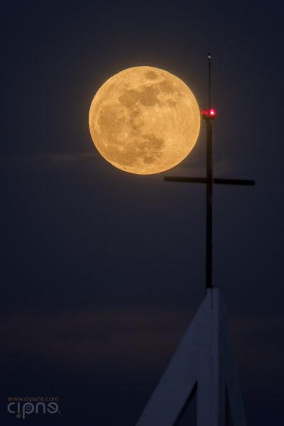 În crucea nopții