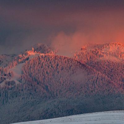 Postavaru (Pădurea fermecată) 30 decembrie 2018